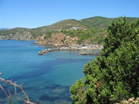Spiaggia del Felciaio - Capoliveri